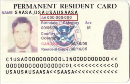 Alien Registration Number on Green Card-3