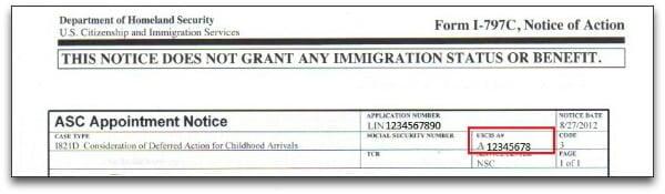 Alien Registration Number on I-797 Notice of Action