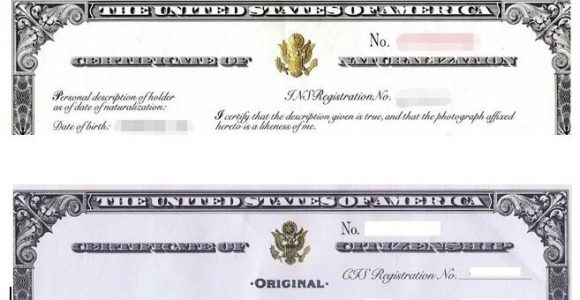 Naturalization Certificate or Citizenship Certificate